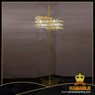 Modern bedroom decoration glass floor lamp (1249F)