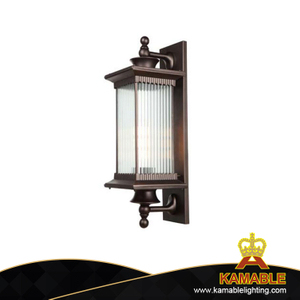 Vintage Indoor Decorative Glass Wall Sconce Lighting (WG92)