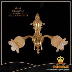 Indoor decorative flower wall light(TB-0935-2)